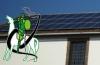 Renewable Energy Project (REP) Update!