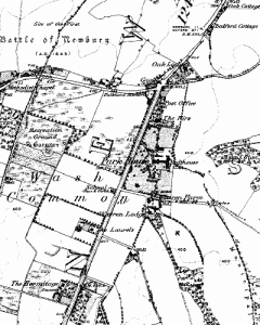 Wash Common in 1877
